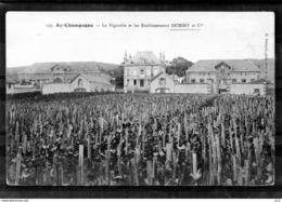 51 - AY - Etablissement Duminy - Ay En Champagne