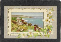 Bethsaida,Israel-Site On The Sea Of Galilee 1909 - Mint Antique Postcard - Israel