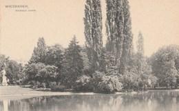 ALLEMAGNE - HESSE - WIESBADEN - Warmer Damm. Verlag : Jacob Levi, Wiesbaden. N° 49 - Wiesbaden