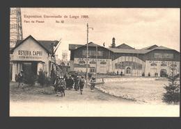 Liège - Exposition Universelle De Liège 1905 - Parc Du Plaisir - Dos Simple - Animée - Liege