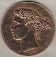 Médaille En Cuivre Alliance Française Signée Paul Belmondo - France