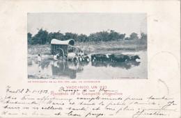 Recuerdo De La Campana Argentina Circulée En 1903 Voir Verso - Argentina