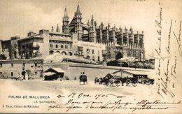 MALLORCA  LA CATEDRAL   ESPAÑA HAUSER Y MENET - Mallorca