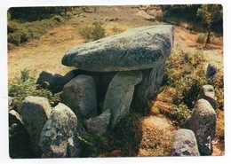 Près  Auray Et Plouharnel - Mégalithes De Bretagne - Le Dolmen De Keravial (préhistoire) - Dolmen & Menhire