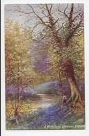 Devon - A Woodland Stream - Jenkins - Tuck Oilette 7841 - Clovelly