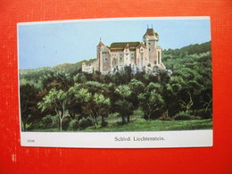 Schloss Liechtenstein - Maria Enzersdorf