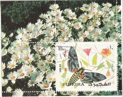 Bf. 134 Fujeira 1972 Farfalle Butterflies  Charaxes Pollux Sheet Perforato. - Fujeira