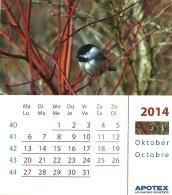Apotex 2014 / Oiseau Vogel Bird / Mesange Mees Tit - Calendriers