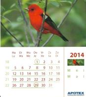 Apotex 2014 / Oiseau Vogel Bird - Calendars