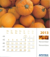 Apotex 2013 / Courge Pompoen Pumpkin - Autres