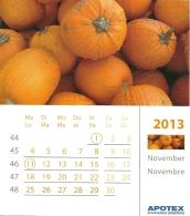 Apotex 2013 / Courge Pompoen Pumpkin - Calendriers