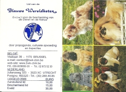 2009 Blauwe Wereldketen / Chien Hond Dog - Calendriers