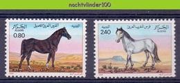 Mms002 FAUNA PAARDEN ZOOGDIEREN MAMMALS HORSES PFERDE CHEVAUX ALGERIE 1984 PF/MNH # - Pferde