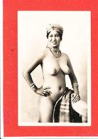 Femme NU Cpsm Animée Etude De Nu Indigene   1322 CAP - Afrique Du Nord (Maghreb)