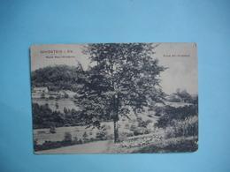 WINDSTEIN  -  67  -  Ruine  -  Neu Windstein  -  Cachet Militaire  9 Gragoner Régiment  -  Bas Rhin - Autres Communes
