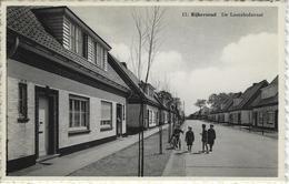 Rijkevorsel    De Loozehofstraat - Rijkevorsel