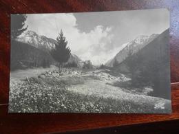 18466) LOCALITA' O VALLE ALPINA NON IDENTIFICATA VIAGGIATA 1944 - Cartoline