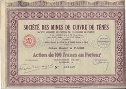 SOCIETE DES MINES DE CUIVRE DE TENES -TUNISIE- ACTION 100 FRS -CATEGORIE B - 1930 - Mines