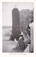 AL82 The Horseshoe Pile At Scarrington - Other