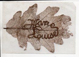 """Feuille D'arbre Véritable Enfermée Dans Un étui Plastique : """"MARIE LOUISE"""" (PPP14900) - Old Paper"""