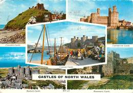 CPSM Castle Of North Wales                   L2667 - Caernarvonshire