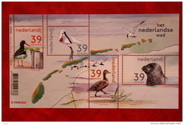 Het Nederlandse Wad Deel 1; NVPH 2170 (Mi Block 77); 2003 POSTFRIS / MNH ** NEDERLAND / NIEDERLANDE / NETHERLANDS - Unused Stamps