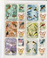 Lot Vögel Gestempelt - Timbres