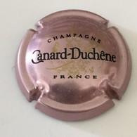105 - Capsule De Champagne - N°75e - Canard-Duchêne Rosé-violacé (petites Lettres) - Canard Duchêne