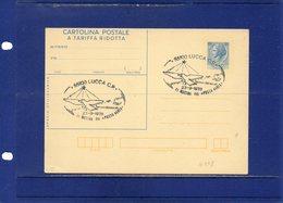 ##(ANT10)-1978-cartolina Postale Tariffa Ridotta L.60 Filagrano C178 Annullo Speciale Lucca-Mostra Posta Aerea + Retro - 6. 1946-.. Repubblica