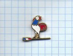 Pin's Pins  AVIRON - COQ  Tricolore FRANCE - Aviron