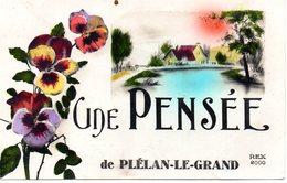 Une Pensée De  PLELAN LE GRAND - France