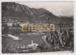 Monaco, Monte-Carlo, Entrée Du Port, écrite - Porto