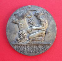Médaille - Nominative - En Bronze - Électricité De France Et Gaz De France - Graveur Henri Dropsy - Professionals / Firms