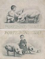 Lot / Série De 2 Cartes Fantaisies Avec Cochon Pot De Chambre Porte Bonheur ( Recto Verso ) - Cochons
