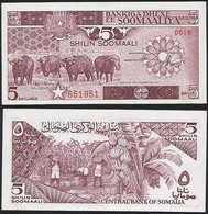 Somalia P 31 C - 5 Shilin Shillings 1987 - UNC - Somalie