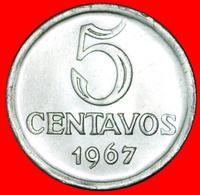 # EFFIGY: BRAZIL ★ 5 CENTAVOS 1967! LOW START ★ NO RESERVE! - Brazil
