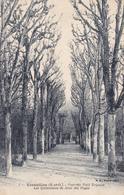 (78) - VERSAILLES - Parc Du Petit Trianon, Les Quinconces De Jeux Des Pages - Versailles (Château)