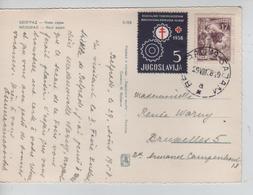 2483/ Yougoslavia PC Novi Sajam Beograd 1958 Stamp Red Cross To Belgium - Briefe U. Dokumente