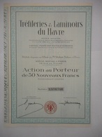 Trefileries Et Laminoirs Du HAVRE - Industrie