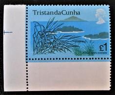 SPARTINA ARUNDINACEA 1972 - NEUF **  YT 173 - MI 173 - COIN DE FEUILLE - Tristan Da Cunha
