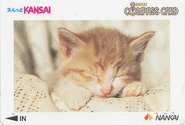 Carte Prépayée Japon - ANIMAL - CHAT 2000 - CAT Japan Prepaid Nankai Card - KATZE - GATTO -  4608 - Gatos