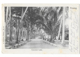 PENANG (Malaisie) Coconut Lane - Malaysia