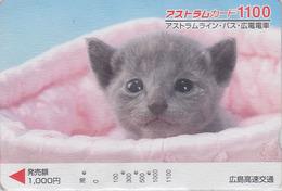 Carte Prépayée Japon - ANIMAL - CHAT 1100 - CAT Japan Prepaid Card - KATZE - GATTO - GATO - FR 4615 - Gatos