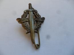 (Militaria -  Insigne DRAGO Réf:   H 01)   -   HONNEUR ET PATRIE (Brevet Préparation Militaire !!)............voir Scans - Badges & Ribbons