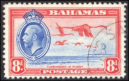 Bahamas 1935 8d Flamingos Fine Used. - Bahamas (...-1973)