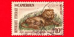 CAMERUN - Usato - 1964 - Parco Nazionale Di Waza -  Felini Predatori - Leoni - Lion (Panthera Leo) - 10 - Camerun (1960-...)