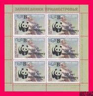 TRANSNISTRIA 2018 WWF Gold Overprint Surcharged Predatory Birds Bird Of Prey Hawk Black Kite M-s MNH - Unused Stamps