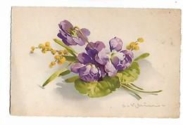 Pensées  Et  Petites  Fleurs  Jaunes - Klein, Catharina