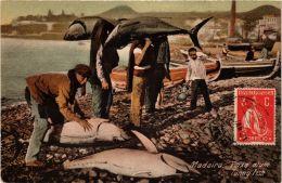 CPA Madeira- Peixe Atum, Tunny Fish. PORTUGAL (719900) - Madeira