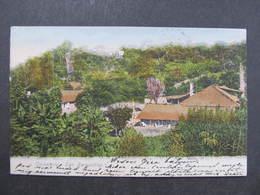 AK Cerveceria San Bernardino 1905 //  D*33959 - Paraguay